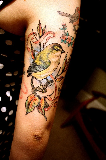 Tatuajes de Aves - Bird Tattoos 3